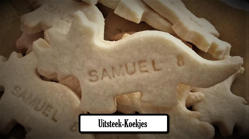 cutoutcookies23