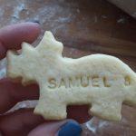 cutoutcookies9